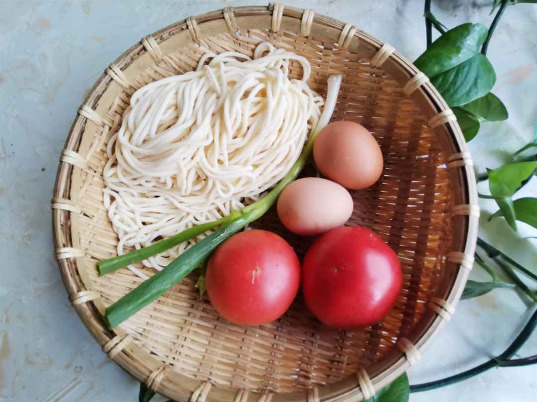 Fresh tomato and egg noodles